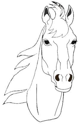 Pferdekopf Malvorlage Kopf Pferd Ausmalbild