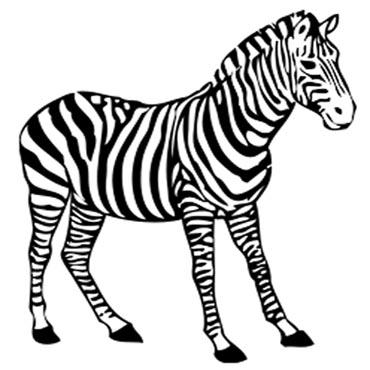 Malvorlagen Zebra Kostenlos | My blog