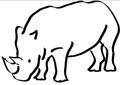 Nashorn Malvorlage