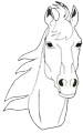 Pferdekopf Malvorlage